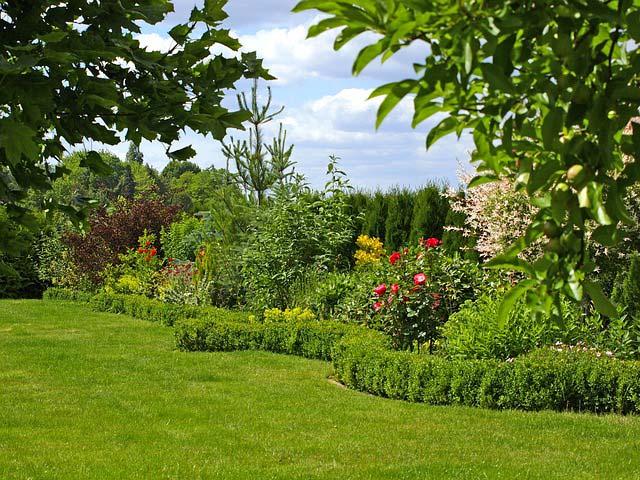 Ogród Twoich marzeń przez cały rok