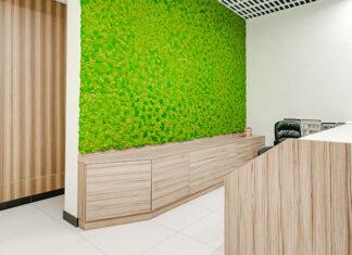 Zielone ściany z żywych roślin lub z mchu