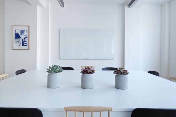 Dlaczego warto wprowadzić rośliny do biura